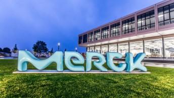Programa de Estágio Merck 2016